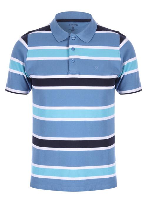 Blue Stripe Polo