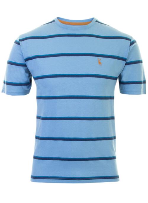 Blue Stripe T Shirt